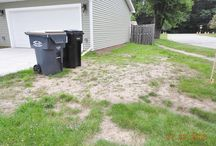 #RescueMyLandscape / My lawn has more dirt and weeds than grass!