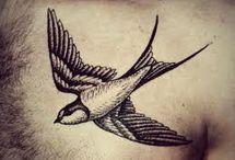 Birds / by Kat