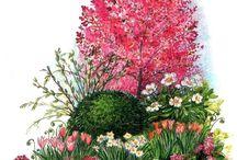 Цветники с невысокими деревьями