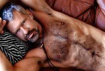 Men of grey hair + / by Broncati !