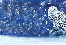 Art Animals and Birds