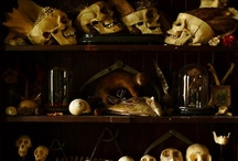 Macabre Collections