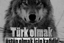 Türk olmak