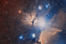 PONTE'S NASA