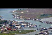 My Hometown-Tangier Island, VA / by Anna Pruitt-Parks
