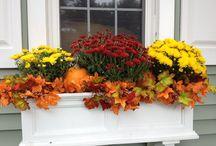 őszi balkon