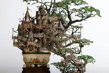 Bonsai trees / The love for Bonsai