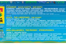 T in the Park / Best festivals