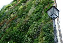 Have Some Decorum Vertical Gardens