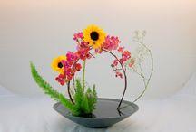 composizioni in fiore
