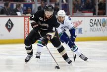 NHL Hockey / Matchups, Recaps and Free Picks for daily NHL Hockey games From Vegas Coverage