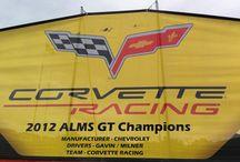 Team Corvette / Corvette Racing / by Bob Genard