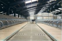 Precast Agriculture Products / FP McCann design and manufacture a range of agricultural cattle slats, ideal for use over slurry channels, underground tanks and as part of a suspended floor system. All cattle slat products are manufactured in accordance with BS 5502 and ISO 9001, ensuring that quality; durability and animal welfare are at the heart of design and manufacture.