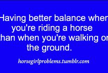 Horse lover problems