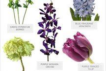 flower fillers