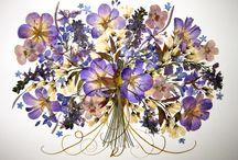 pressed flowers / Doğa sanatta ölümsüz kılındı! Çiçeklerdeki mükemmel yaratı bizi sana aşık etti!