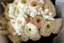 Marie & George / provence wedding