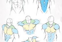 musculature homme