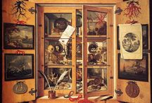 A Cabinet of Cabinets of Curiosities / What the title says. How meta can you get!?