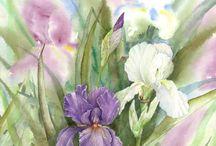 Paisagens, Plantas e Flores