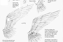 Drawing Ideas (Wings)