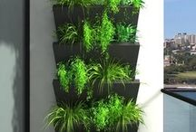 Balcony an Container Garden Ideas