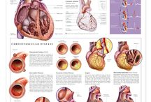 HEALTH HEART CONDITIONS