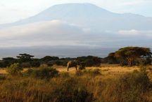 Kenya Travel Inspiration / Kenya