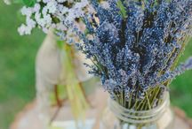 Malvi & Co. - Flower Power / It's springtime!  Tempo di primavera!