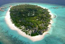 Dalış Otelleri-Diving Resorts / Dalış keyfini yaşayabileceğiniz Maldivler otelleri