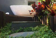 Tropical Garden Design / Breeze was our award winning garden in the 2014 Melbourne International Flower and Garden Show.