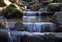 Outdoor / Berge, Wald, Natur