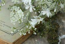 Flower is my soul