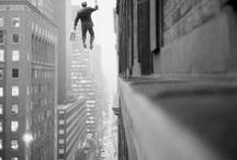 Fly / by Natasja van der Horst