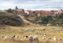 Urrez / imágenes de #Urrez en #Burgos.