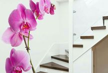 Inspirational Home Designs: Stairs, Murals