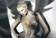 wings / by Sandra Crosbie