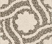 HABITAT Gress / Milan Tiles' premium products