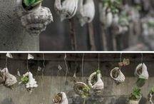 kytky v ulitách