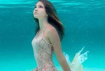 fotografii sub apa