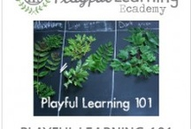 Playful Learning Spaces / by Kelley Braegger