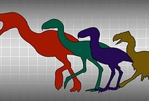 Paleontology / by Rachel Jones