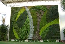 Vertical/Living Garden/Walls / by Wheelchair Wanderer Lou Ellen