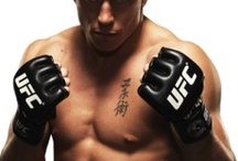 Mixed Martial Arts / MMA Legends and Favourites