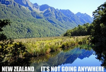New Zealand Fun