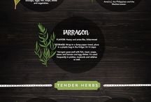 herbs to cook with