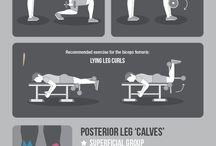 Ejercicios para mejorar tu Cuerpo