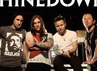 Music / Shinedown / by Lynette Sargent