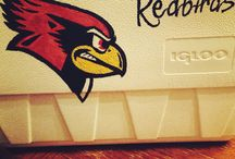 Illinois State / by Connor Carson