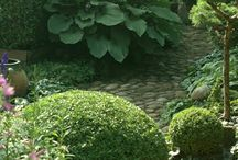 Naturlik trädgård